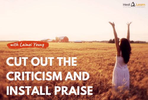 CUT OUT THE CRITICISM AND INSTALL PRAISE